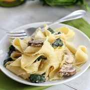 Mushroom Spinach Papperdelle